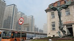 QingdaoM